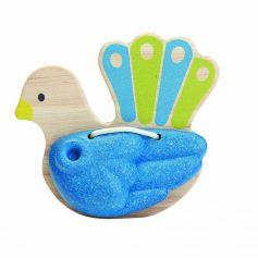 Bird Percussion - Peacock